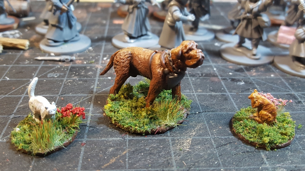 28mm dog and two cats